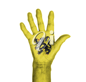 Palm of a woman hand, painted with flag of Flanders