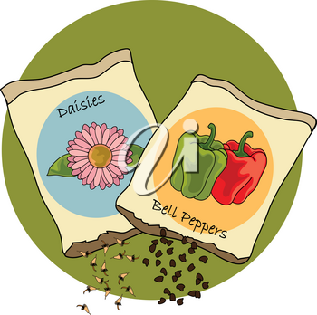Clip Art Image of Bell Pepper and Daisy Seed Packets