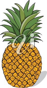 Clip Art Illustration of a Whole Pineapple