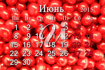calendar for June of 2015 year with red berries of Prunus tomentosa in Russian
