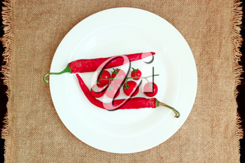 branch of red cherry tomatoes and two pods of chili peppers on the plate