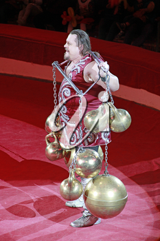 Strong man showing tricks with weights on arena of circus. Tricks on circus arena