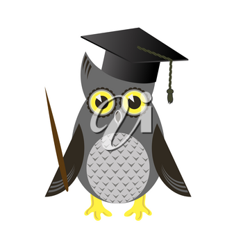 Cute Owl Bird with Graduation Cap Isolated on White Background