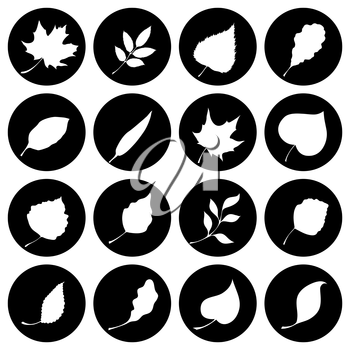 Leaves silhouettes. Black and white design.