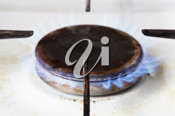 burning gas in hearth ring of kitchen stove