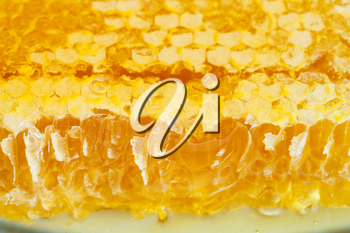 broken yellow honeycomb with honey on plate close up