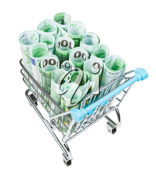 shopping trolley with rolls from euro banknotes isolated on white background
