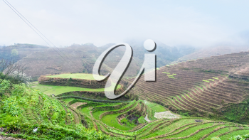 travel to China - above view of terraced rice gardens on hills from Tiantouzhai village in area Dazhai Longsheng Rice Terraces (Dragon's Backbone terrace, Longji Rice Terraces) country in spring