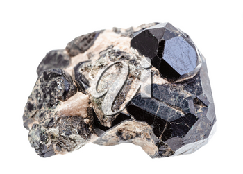 closeup of sample of natural mineral from geological collection - black Spinel crystals on diopside druse isolated on white background