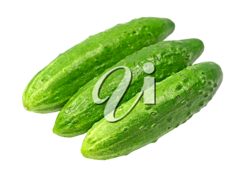 Three ripe green cucumbers taken closeup isolated on white background.