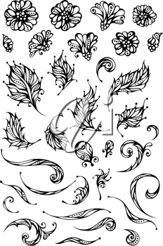 Ornate flowers and leaves for your design isolated on white background.