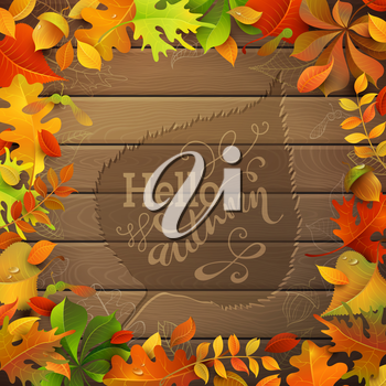 Bright colourful autumn leaves on wood background. Hand-written text in the center.
