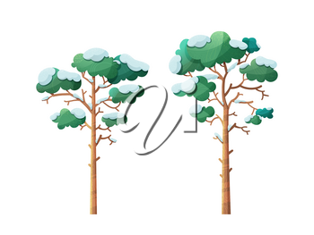 Winter trees flat vector illustrations set. Snow-capped pines isolated on white background. Evergreen forest flora covered with snow. Bare leafless trunk, green leaves. Cold season botanical cliparts