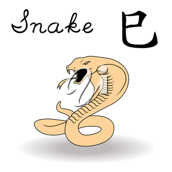 Eastern Zodiac Sign Snake, symbol of New Year in Chinese calendar, hand drawn vector artwork isolated on a white background