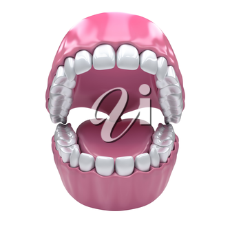 Open mouth and white healthy teeth isolated