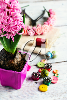Pink hyacinth and tools for making jewelry for spring