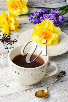 Cup of tea on saucer and fresh flowers tulips and daffodils