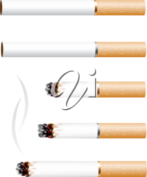 The cigarette and smoke stub isolated on white background
