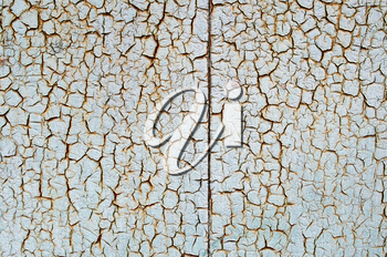 Rusty metal surface is covered with a thick layer of paint which has cracked from age to use as a background.