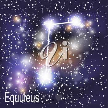 Equuleus Constellation with Beautiful Bright Stars on the Background of Cosmic Sky Vector Illustration. EPS10