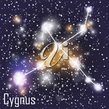 Cygnus Constellation with Beautiful Bright Stars on the Background of Cosmic Sky Vector Illustration. EPS10