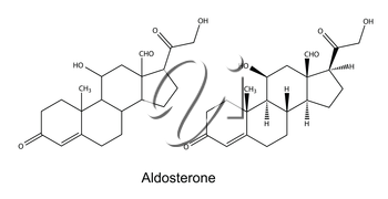Structural chemical formulas of aldosterone, 2D illustration, vector, isolated on white background