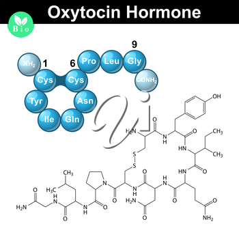 Oxytocin peptide hormone chemical formula and model, 2d and 3d illustration, vector isolated on white background, eps 10