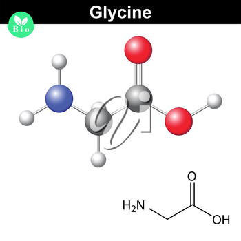 Glycine - main amino acid and inhibitory neurotransmitter, chemical model and molecular structure, 2d and 3d illustration, vector, eps 8