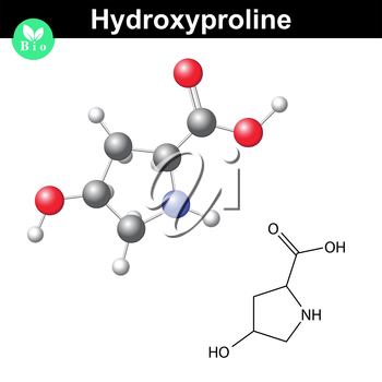 Hydroxyproline non essential heterocyclic amino acid, main collagen compound, 2d and 3d vector illustration, isolated on white background, eps 8