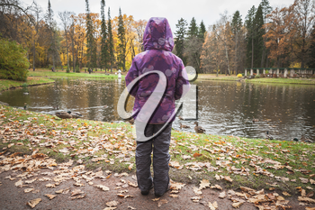 Little girl stands near lake coast in autumn park, rear view