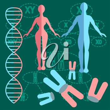 Set of people with genetics and DNA strands with two kinds of schemes of division of chromosomes. vector illustration