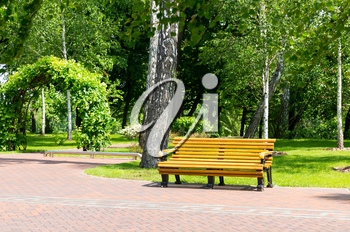 Wooden bench in the park and brick path