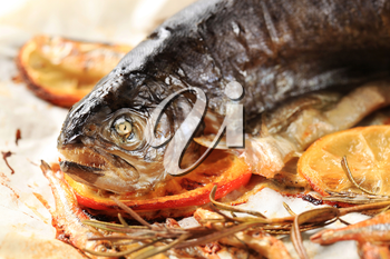 Whole trout and anchovies baked in parchment paper