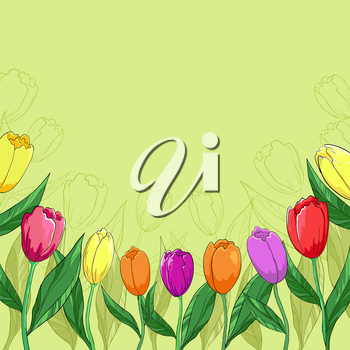 Flower vector background, tulips flowers and contour on a green