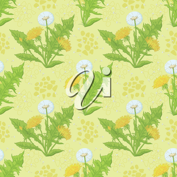 Seamless floral background, dandelion flowers and abstract pattern. Vector
