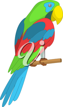 Clever speaking colored parrot sits on a wooden pole. Vector