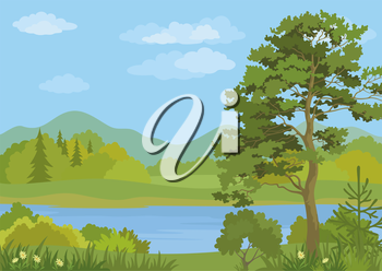 Landscape with Pine, Fir Trees, Grass and Flowers on the Shore of a Mountain Lake under a Blue Cloudy Sky. Vector