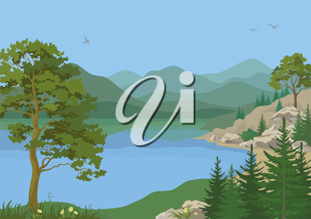 Landscape with Pine, Fir Trees, Flowers and Grass on the Shore of a Mountain Lake under a Blue Sky with Birds. Vector