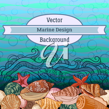 Sea Exotic Pattern, Seashells, Starfish Colorful and Contours on a Blue and Green Wave Background. Vector