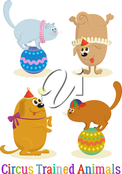 Set of Cheerful Kind Circus Trained Animal, Dogs and Cats, Holiday Illustration, Funny Cartoon Characters, Isolated on White Background. Vector