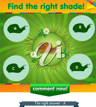 visual game for children and adults. Task the find right shadow snail