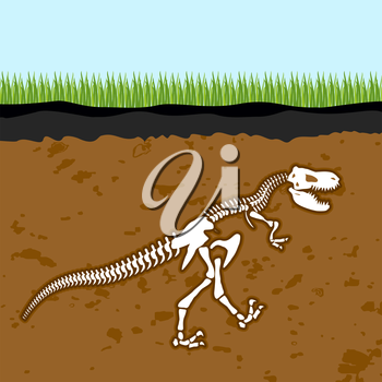 Skeleton of  Tyrannosaurus Rex. Dinosaur bones in Earth. Fossil Ancient fearsome animal. Slice through  soil. archaeological excavations. Prehistoric monster