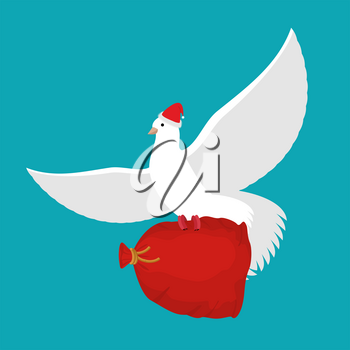 Pigeon Santa Claus carries sack with gifts. Red bag for toys and sweets. White Dove in cap. flying bird. Illustration for New year and Christmas