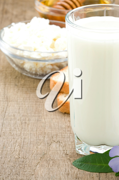 milk products and cheese on wooden background