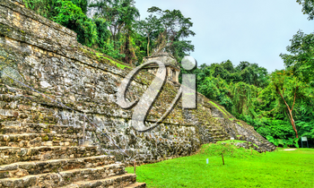 Ruins of Palenque in Chiapas, an ancient Maya city in Mexico