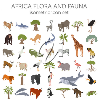 Flat 3d isometric Africa flora and fauna map constructor elements. Animals, birds and sea life isolated on white big set. Build your own geography infographics collection. Vector illustration