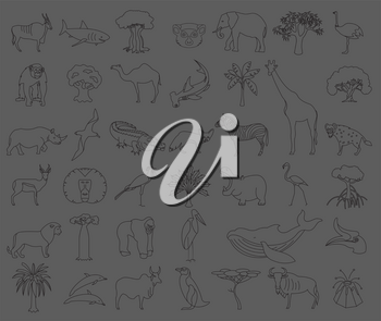 Thin line Africa flora and fauna elements. Animals, birds and sea life isolated on white big set. Build your own geography infographics collection. Vector illustration