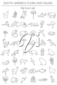 Flat South America flora and fauna  elements. Animals, birds and sea life simple line icon set. Vector illustration