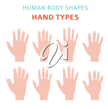 Human body shapes. Hand types icon set. Vector illustration
