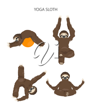 Sloth yoga collection. Funny cartoon animals in different postures set. Vector illustration